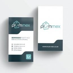 Plummex Business Card