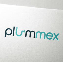 Plummex Logo Design